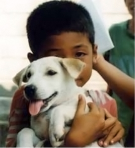 Thai boy and puppy
