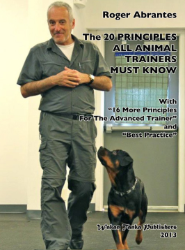 """The 20 Principles"" cover."
