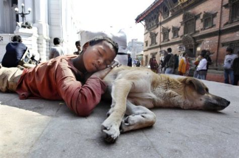 Boy and dog sleeping on the street.