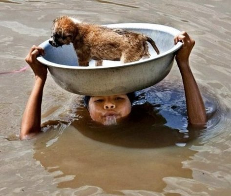 Woman saving dog from the flood